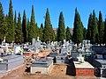 Cementerio de Puertollano.jpg