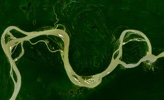 Amazon river dolphin - The main branch of the Amazon River near Fonte Boa, Brazil, with multiple floodplains, lakes and smaller channels. The Amazon river dolphin is observed here throughout the year