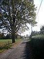 Cesta 08 - panoramio.jpg