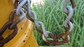 Chain (2408584834).jpg