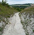 Chalk path - panoramio (1).jpg