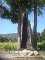 Chandrawati Stone.jpg