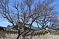 Changdeokgung Palace, Seoul, constructd in 1405 (26) (41113707911).jpg