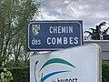 Chemin des Combes (Saint-Maurice-de-Beynost) panneau de rue.jpg