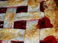 Cherry pie lattice, closeup, July 2006.jpg