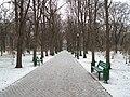 Chişinău park - panoramio.jpg