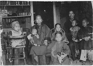 Chinese immigration to Hawaii - Chinese immigrant family living in Honolulu in 1893.