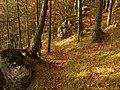 Chodník na Strážnu - panoramio.jpg