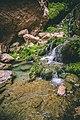 Chota Chotok-6.jpg
