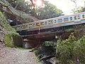 Chuo Main Line passing above Tokai Nature Trail.jpg