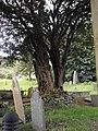 Churchyard at Ysbyty Cynfyn - geograph.org.uk - 1389455.jpg