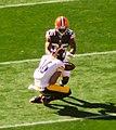 Cleveland Browns vs. Pittsburgh Steelers (15530401725).jpg