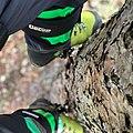 Climbing Spurs.jpg