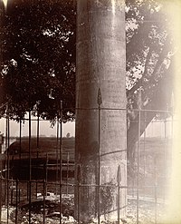 Close view of Lauriya Nandangarh Ashoka Pillar.jpg