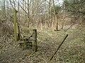 Cobley Wood, Hampshire - geograph.org.uk - 140578.jpg