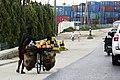 Commerçant à vélo à Dar Es Salam.jpg