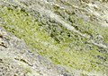Connemara Lissoughter Marble.jpg
