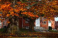 Country-brick-church-autumn-maple-tree - West Virginia - ForestWander.jpg