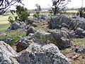 Crace Hill rocks.jpg