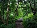 Cragside Estate - geograph.org.uk - 920144.jpg