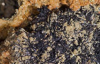 Cronstedtite - Cronstedtite - Salsigne Mine - France