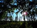 Cross Plains Conservancy - panoramio.jpg