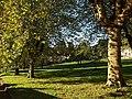 Crownhill Park, Torquay - geograph.org.uk - 1017442.jpg