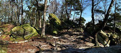 Dörenther Klippen NSG ST-023 Kreis Steinfurt P1330372-408-1.jpg