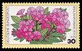 DBP 1976 904 Wohlfahrt Gartenblumen Phlox.jpg