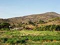 DISTRITO DE BAIXA GRANDE - panoramio - MACÍLIO GOMES (2).jpg