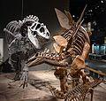 DMSN dinosaurs.jpg