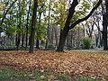 DSC01658 Giardini pubblici di Pta Venezia, Milano - Foto di G. Dall'Orto - 20-12-2006.jpg