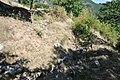 Dacian Fortress of Capalna 031.jpg
