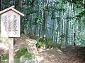 Daimonzaka8613.JPG