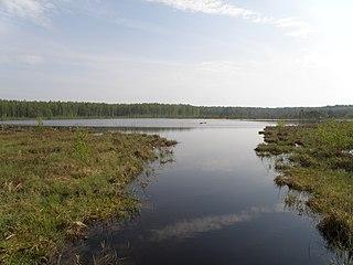 District in Vladimir Oblast, Russia