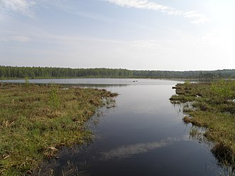 Kameshkovsky District - Daryino Lake (near Novki)