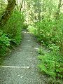 Deadhorse Path.jpg
