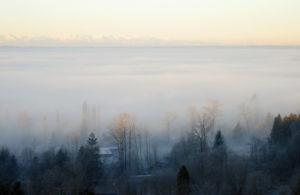 December Fog 01 edit2.jpg