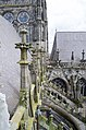 Den Bosch St. Jan's kathedraal-Cathedral - panoramio (7).jpg