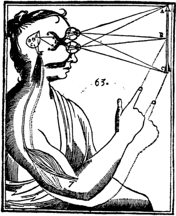Diagram from one of René Descartes' works.