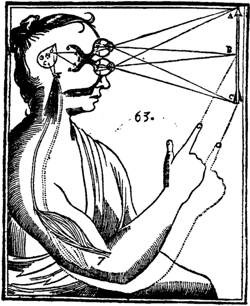 """This woodcut from Descartes' 1644 Principles of Philosophy diagrams Descartes' theory of vision and its interaction with the pineal gland. Descartes believed that light rays impressed subtle particles into the eyes. The image was then transmitted to the pineal gland, which served as the nexus between mind and body. In this sketch the external stimulus is translated into an act of will (pointing) by the pineal gland."""