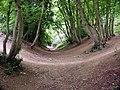 Devils Dyke, Wheathamstead - geograph.org.uk - 799.jpg