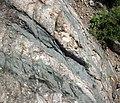 Dikes intruding tillite (Nipissing Diabase & Gowganda Formation, Paleoproterozoic; Percival Lake roadcut, Ontario, Canada) 21 (47675155472).jpg