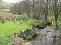 Dildre Brook - geograph.org.uk - 1469466.jpg