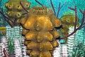 Diorama of a Carboniferous seafloor - Hydnoceras sponge 1 (45605997361).jpg