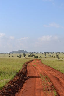 Dirt road facing south in the LUMO Community Wildlife Sanctuary near the main gate in Kenya 4.jpg