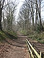 Disused Railway line, Welwyn Garden City - geograph.org.uk - 1211238.jpg