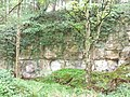 Disused quarry in Quarry Bank Wood - geograph.org.uk - 432263.jpg