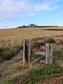 Disused stile on Botallack Common - geograph.org.uk - 230206.jpg