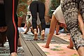 Doing yoga 35500142292.jpg